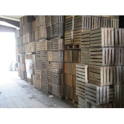 Bulk Buy Wooden Apple Crates