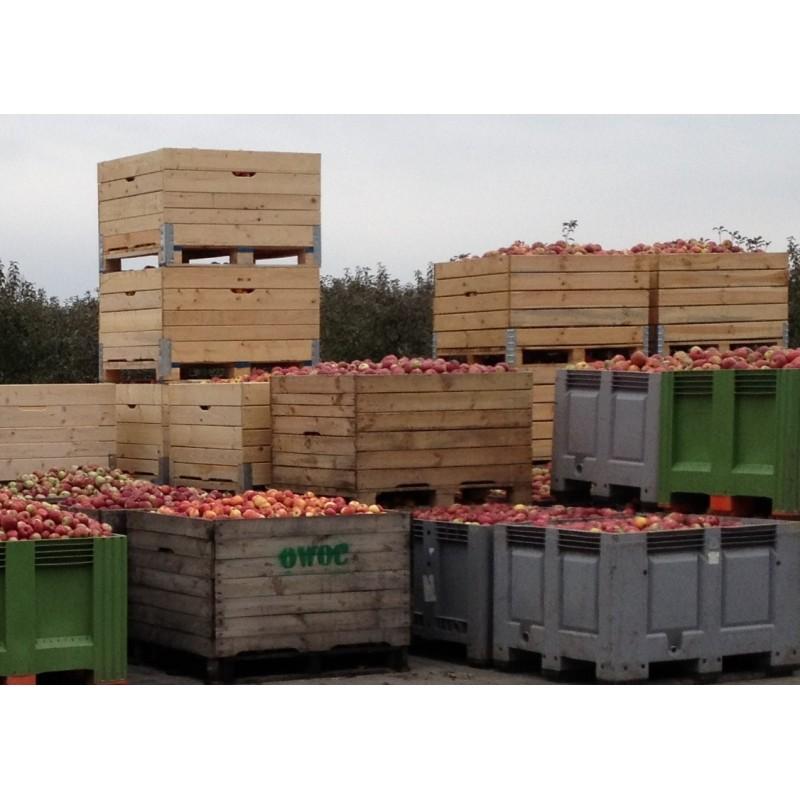 Large Apple Bin