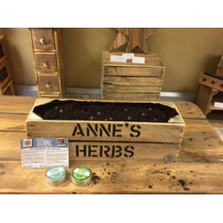Herb Garden for Mother's Day