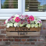 Flower (Window) Box