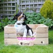 Dog Beds (3)